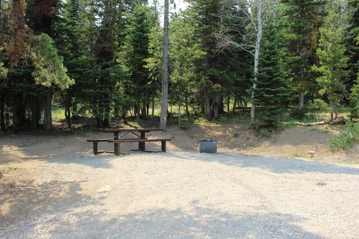 Site 19Table and Fire Ring