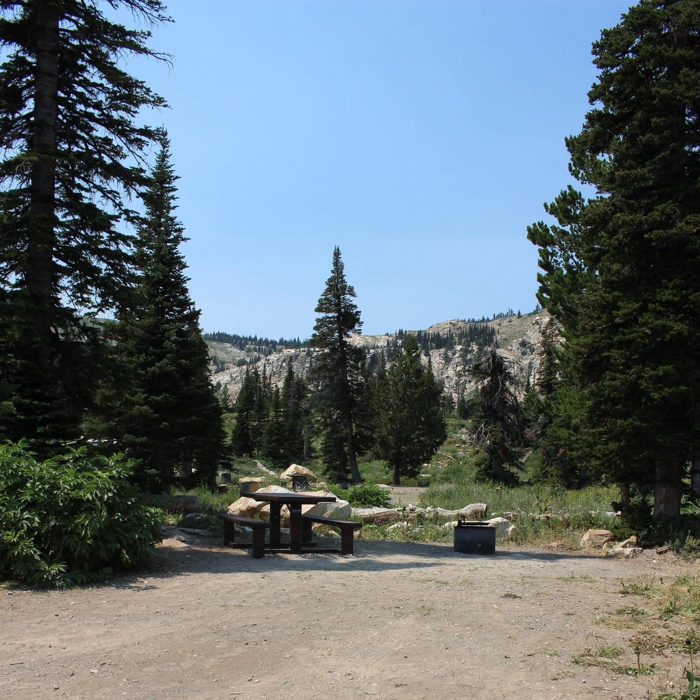 Site 8 TableSite 8 Table And Fire Pit