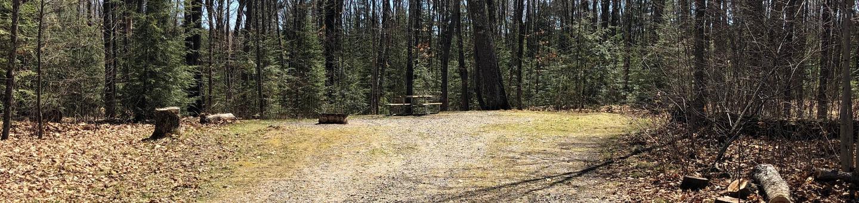 Campsite 8
