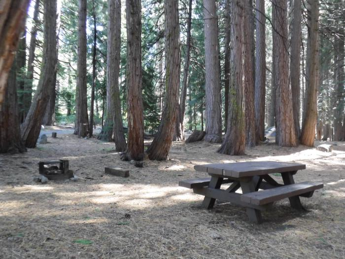 Campsite 24