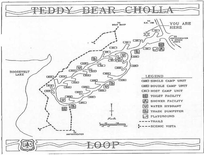 Teddy Bear Loop MapCholla Campground