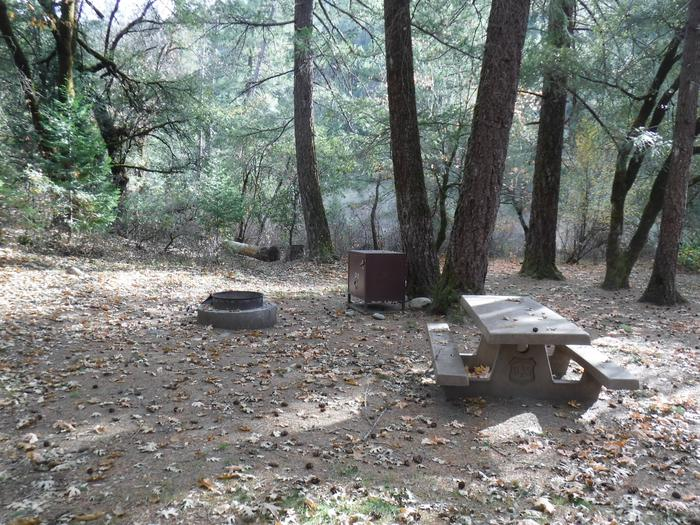 Campsite 7
