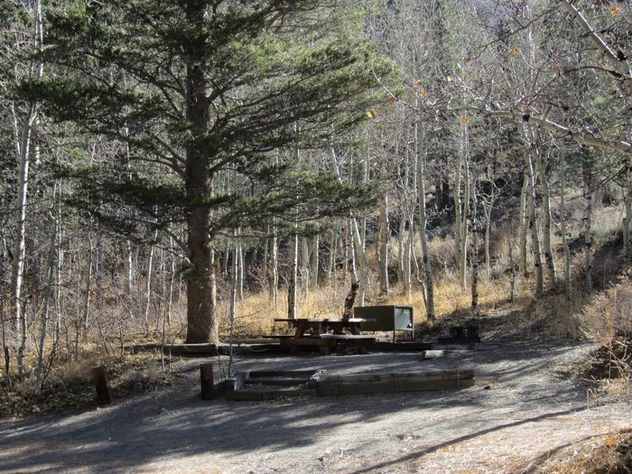 Gull Lake Campground Site 5Site 5