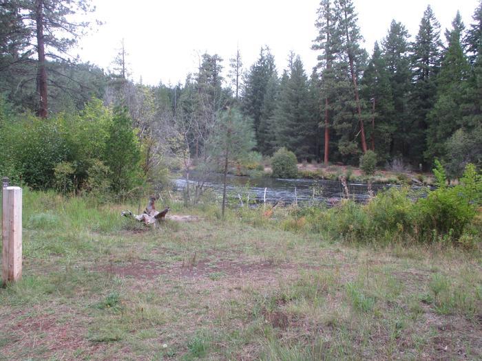 Allen Springs site 6Site 6