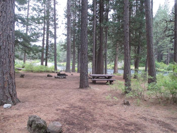 Allen Springs site 12Site 12