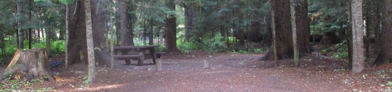 Trapper Creek Site 23Site 23