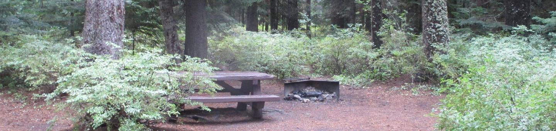 Trapper Creek Site 19Site 19