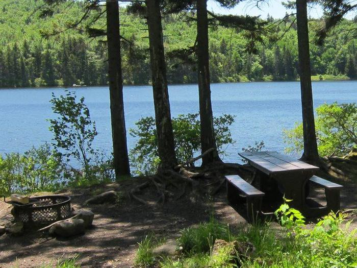 fire ring and picnic table in foreground, pond in backgroundcampsite 1