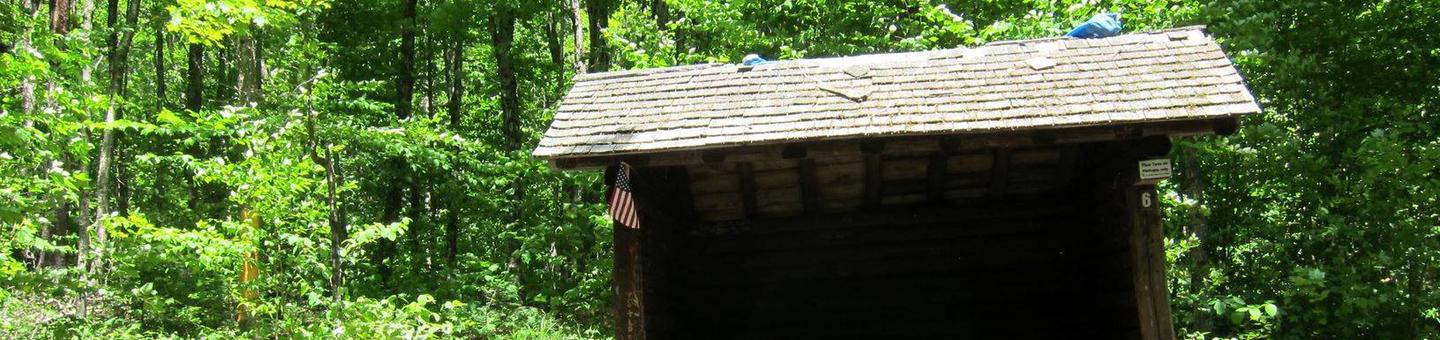 3-sided shelter in shady campsitecampsite 6