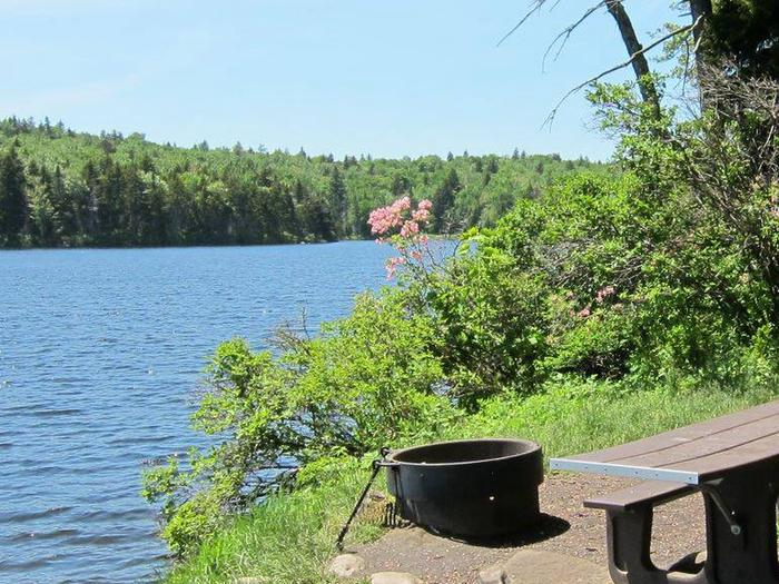picnic table, fire ring, and tent pad in the foreground, pond in the backgroundcampsite 7