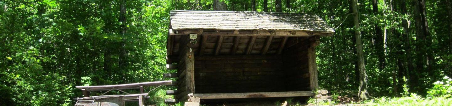 three sided shelter in a shady campsitecampsite 8