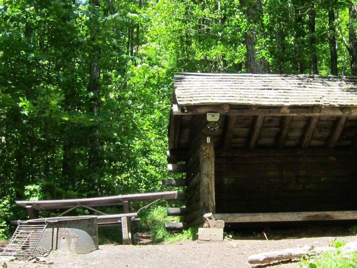 three sided shelter in shady campsitecampsite 8; new shelter constructed in fall of 2020