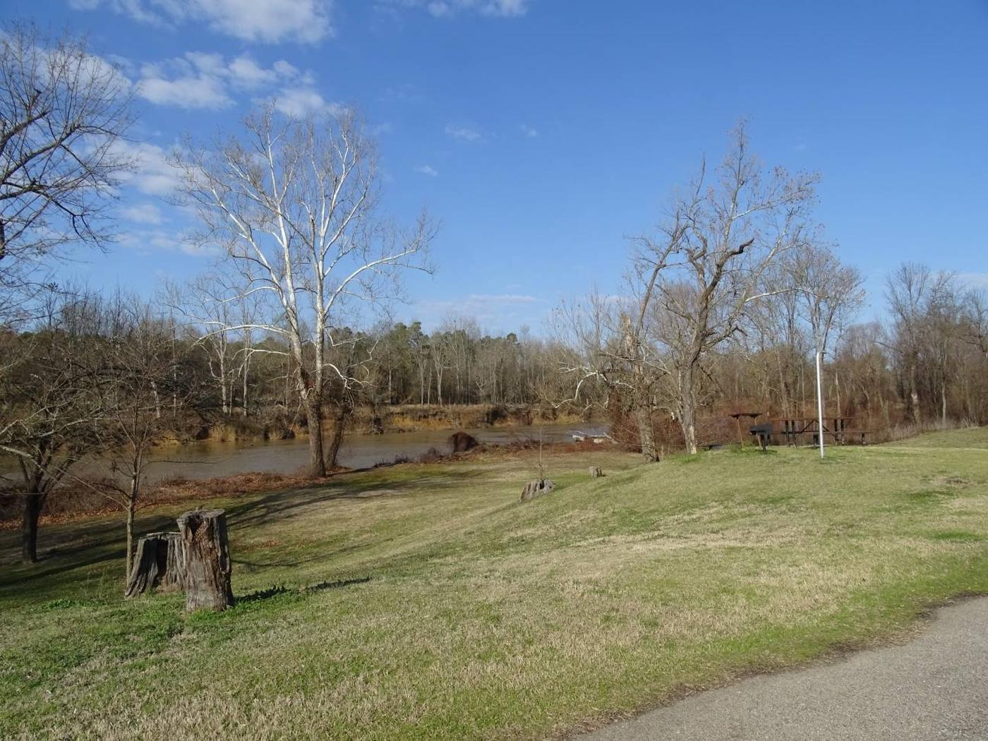 Rattan river bank