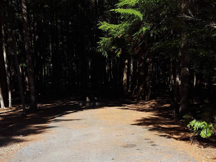 Beaver Creek Campground Site 29