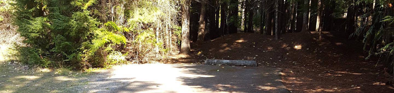 Beaver Creek Campground Site 31
