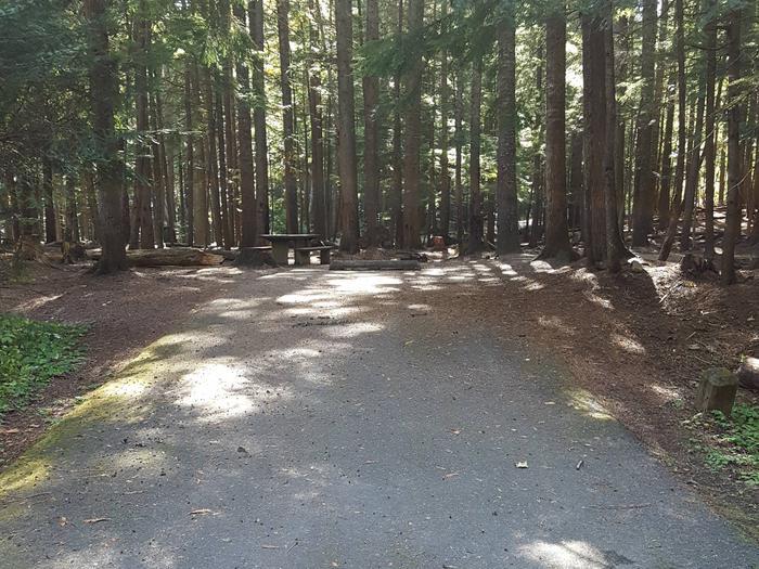 Beaver Creek Campground Site 35