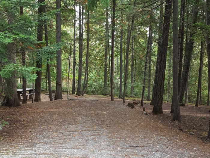 Osprey Campground Site 2