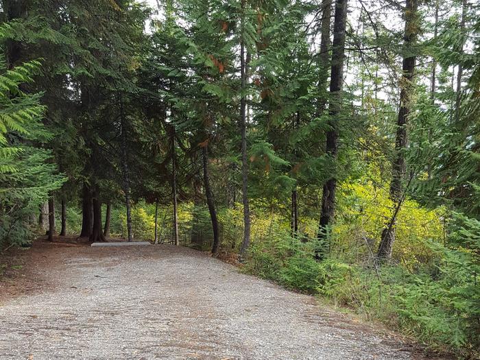 Osprey Campground Site 5