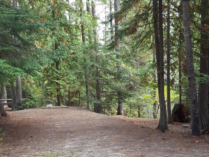 Osprey Campground Site 6