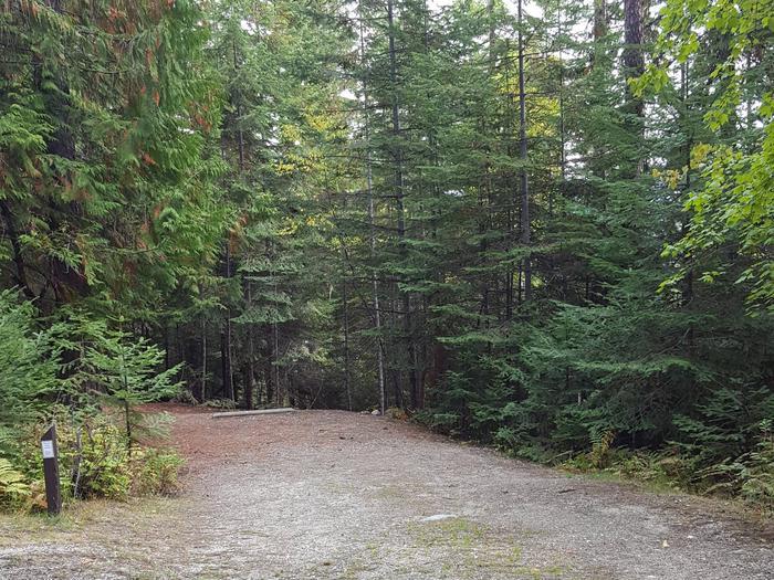 Osprey Campground Site 7