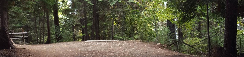 Osprey Campground Site 8