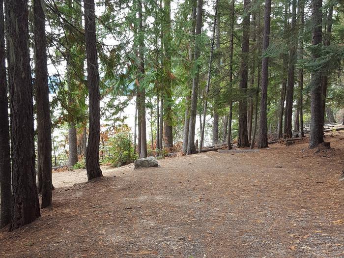 Osprey Campground Site 11