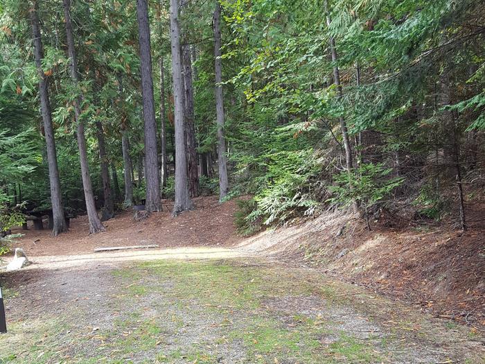 Osprey Campground Site 14