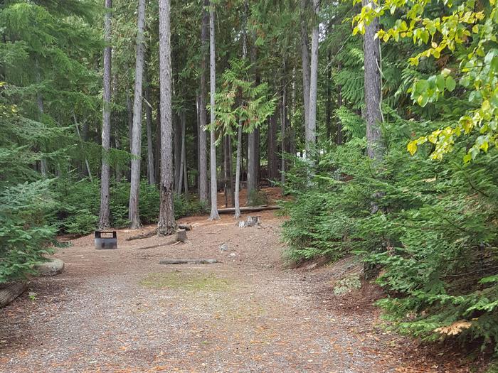 Osprey Campground Site 15