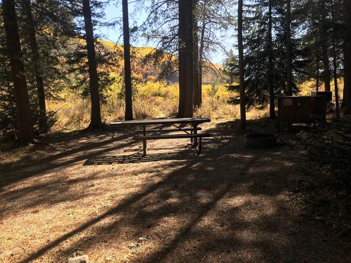 Campsite #8 (Tent Campsite)