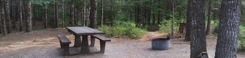 Devil's Elbow Campground Site 6