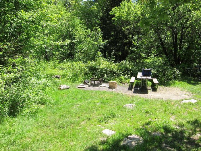 picnic table and fire ring campsite 12