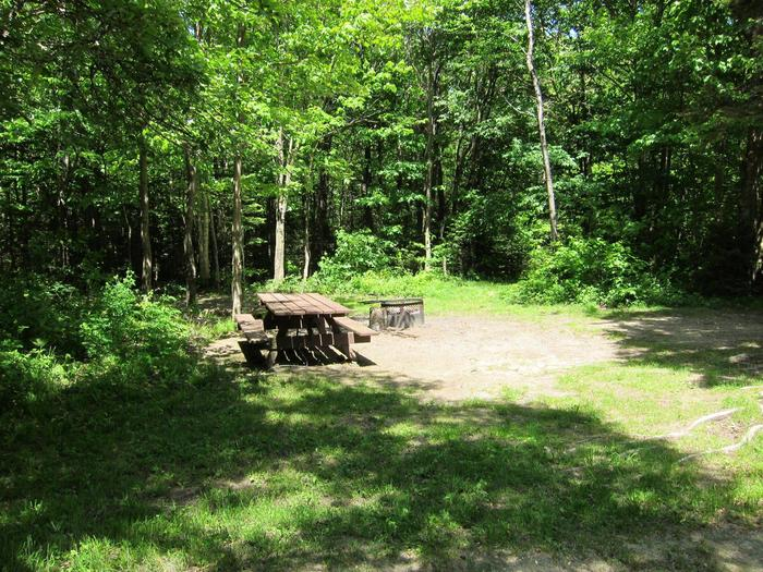 picnic table and fire ring in wooded campsitecampsite 13