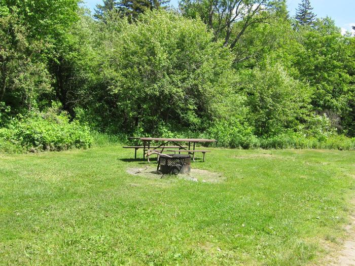 picnic table and fire ring in sunny campsitecampsite 15