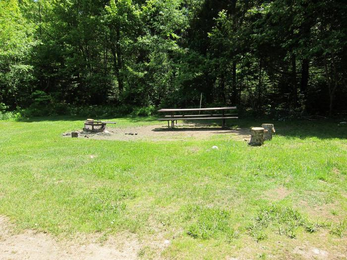 fire ring and picnic table in partially shaded campsitecampsite 16