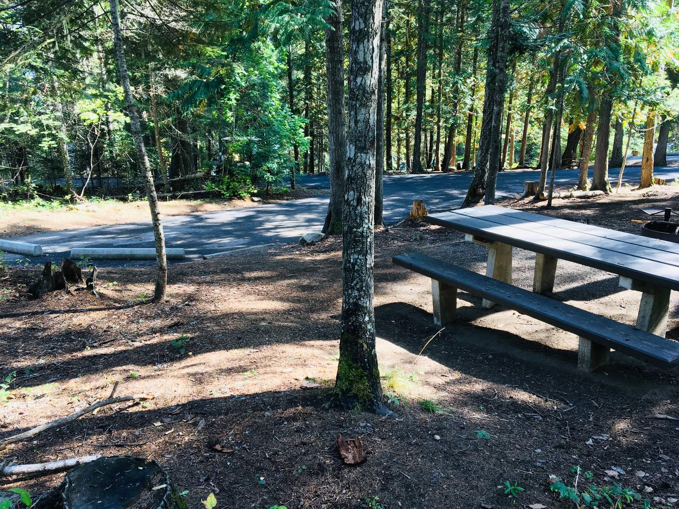Outlet Campground Site 18
