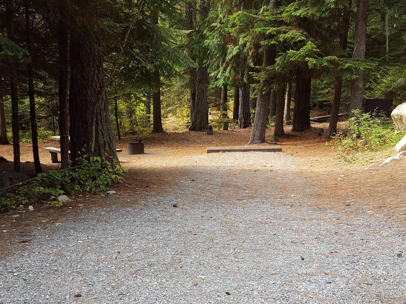 Reeder Bay Campground Site 16