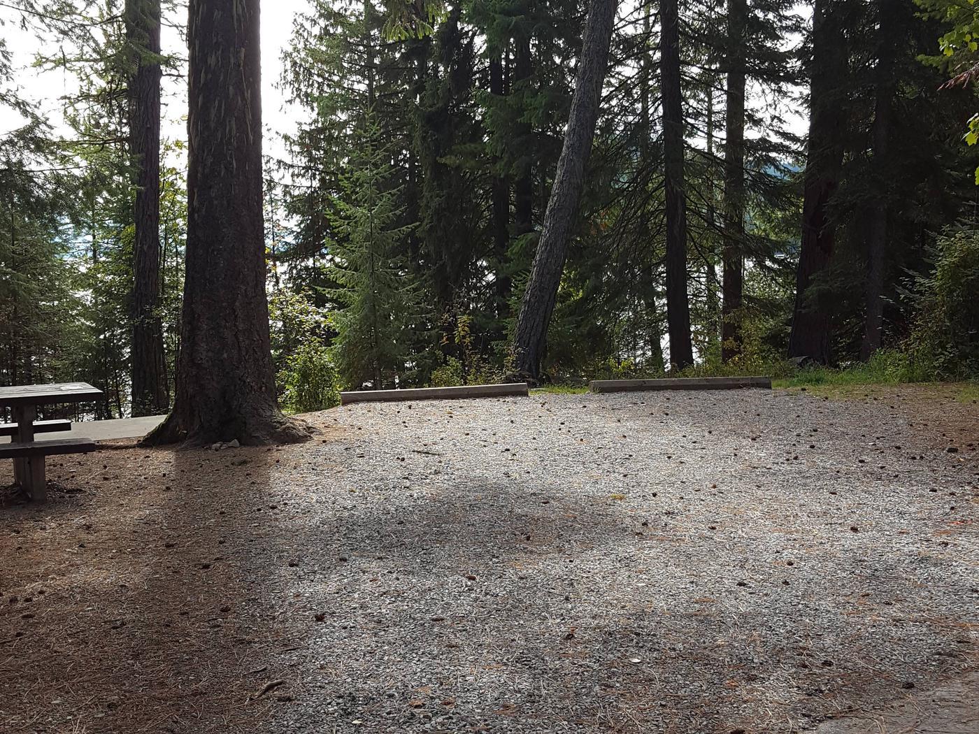 Reeder Bay Campground Site 17