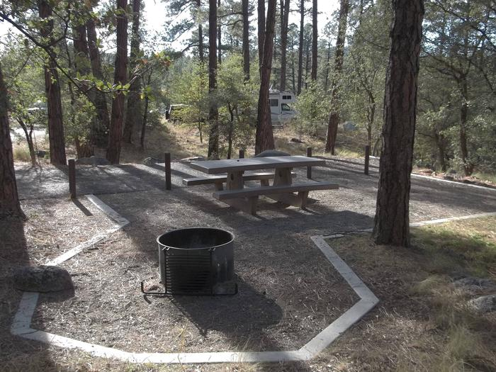 White Spar Site 10 Fire ring, table under the trees on a gravel pad lined with concrete edging with parking area in the background White Spar Site 10