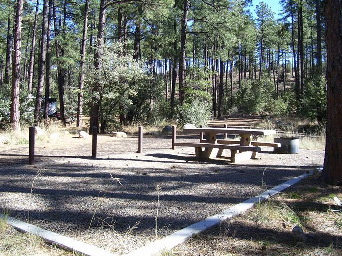 White Spar Site 11 shaded graveled tent area with table and fire pit in the treesWhite Spar Site 11