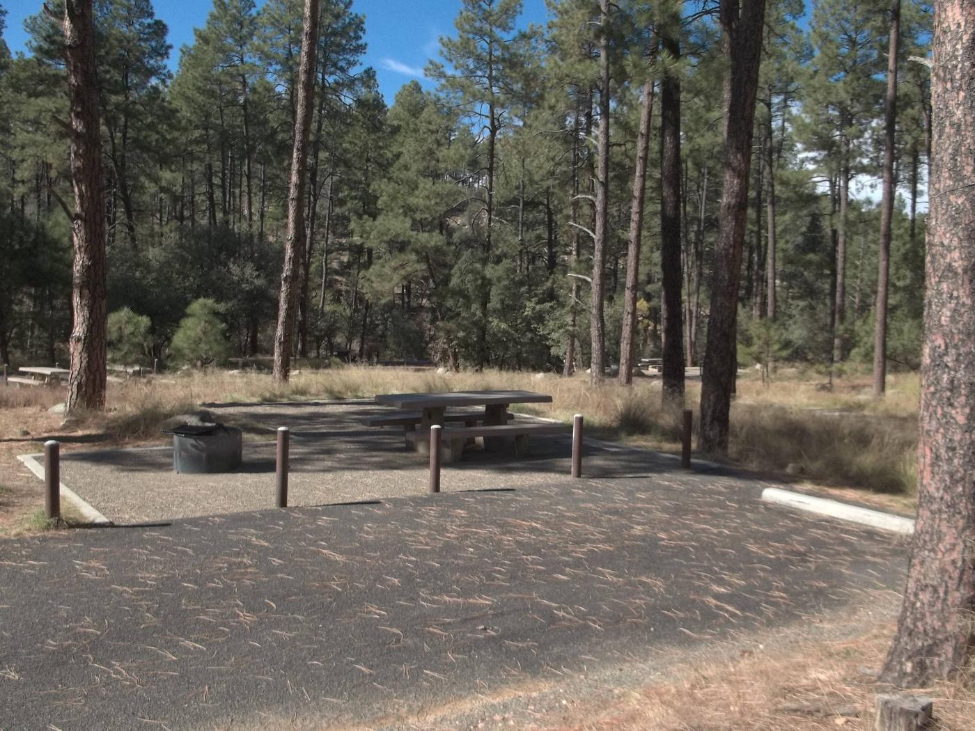 Site 16 Back-in paved parking with table and fire pan to the left White Spar Site 16
