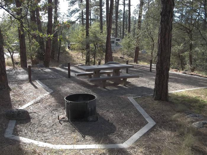 Accessible White Spar Site 10 with pull-in parking and flat graveled table and fire panWhite Spar Site 10