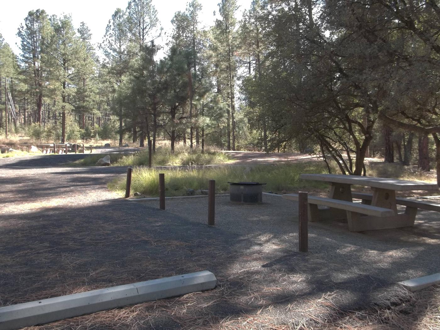 Heavily shaded White Spar Accessible Site 19 Back-in paved parking with gravel picnic area.White Spar Site 19