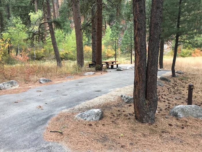 Baumgartner Camp Site 28Site 28