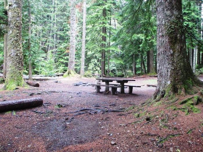 Denny Creek Campground Site 10Site 10