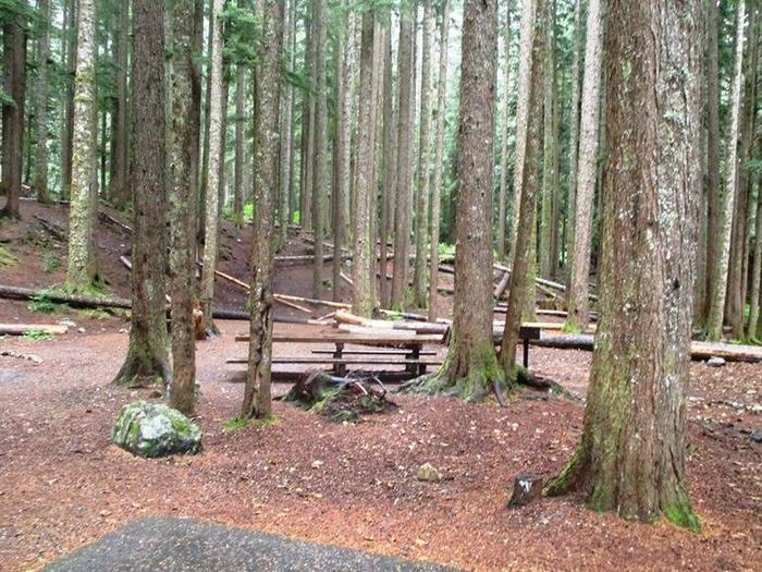Denny Creek Campground Site 11Site 11