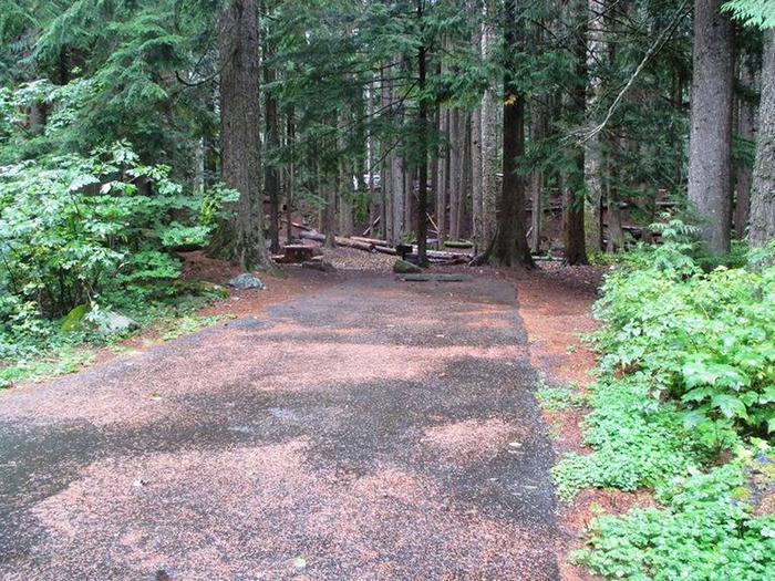 Denny Creek Campground Site 13Site 13