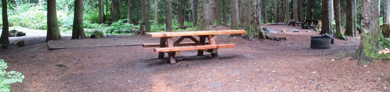 Denny Creek Campground Site 14Site 14