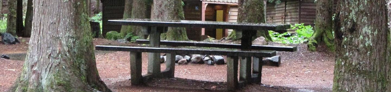 Denny Creek Campground Site 17Site 17