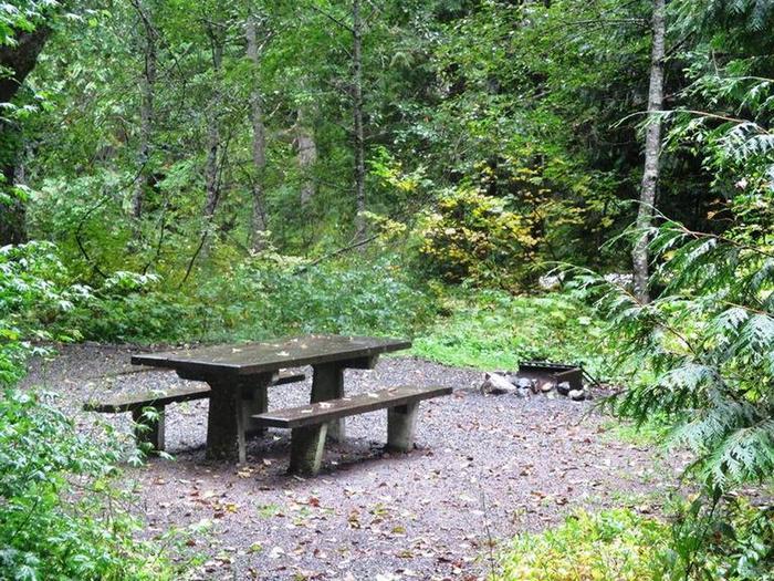Denny Creek Campground Site 19Site 19