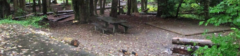 Denny Creek Campground Site 23Site 23